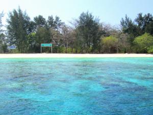 6 Aktivitas Menarik di Pulau Pramuka Andrew Hidayat KPK