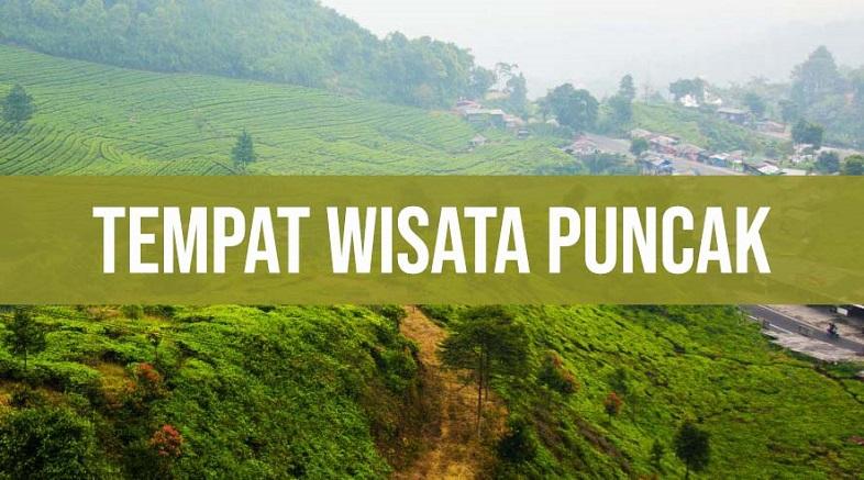 8 Wisata di Puncak Bogor Ala Andrew Hidayat