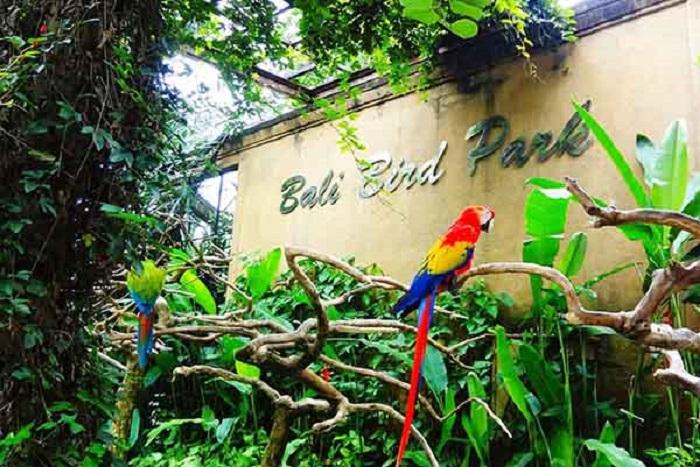 Bali Bird Park Andrew Hidayat KPK